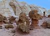 Desert Sunami