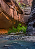 Alcove - Zion Canyon Narrows