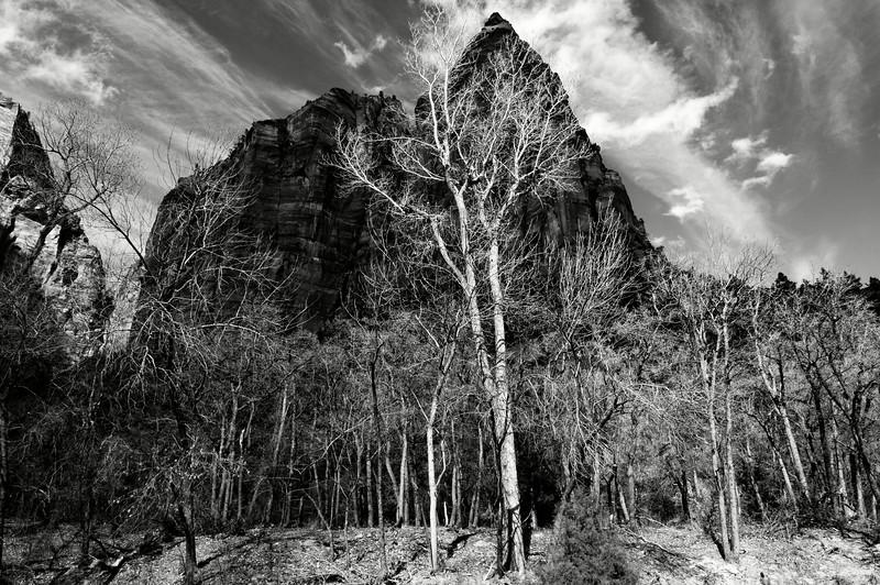 Sommet dominant la vallée de la North Fork Virgin River dans le Zion National Park. Plateau du Colorado/Utah/USA