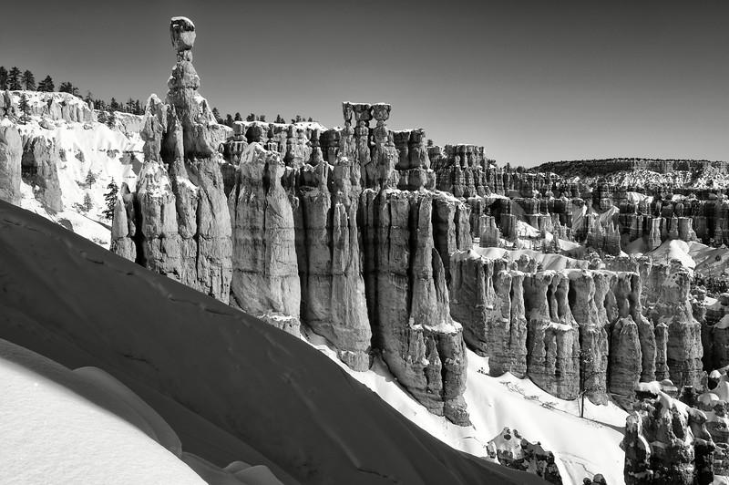 Vue des cheminées de fées de Bryce Canyon sous la neige. Plateau du Colorado/Utah/USA