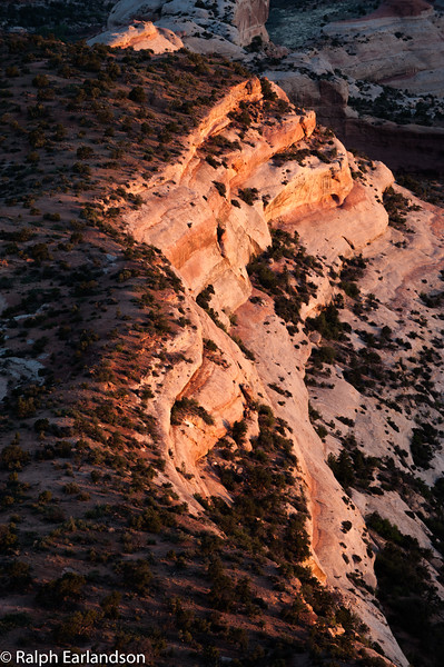 Salt Creek Canyon, in the Needles section, sidelit at sunrise.