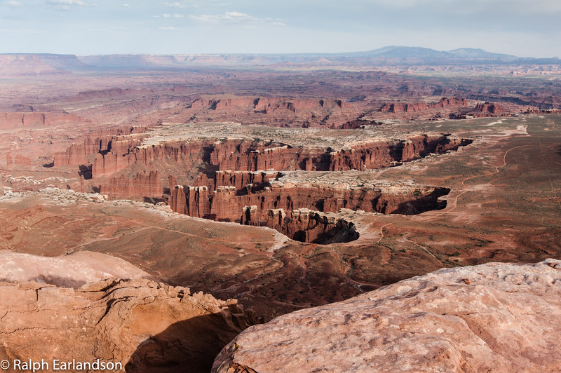 A view of branching canyons from Grandview Point in the Island in the Sky section.