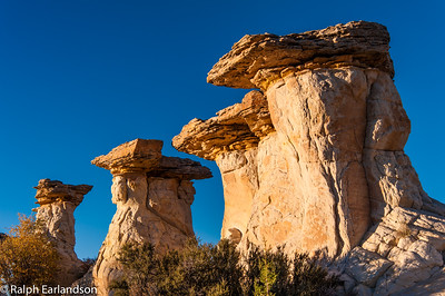 Late afternoon sunlight bathes these hoodoos.