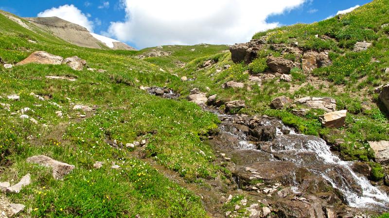 One of many creeks that feed into Treasure Creek.
