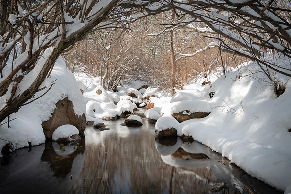 Recent snowfall in Cheyenne Canyon, Colorado Springs, CO
