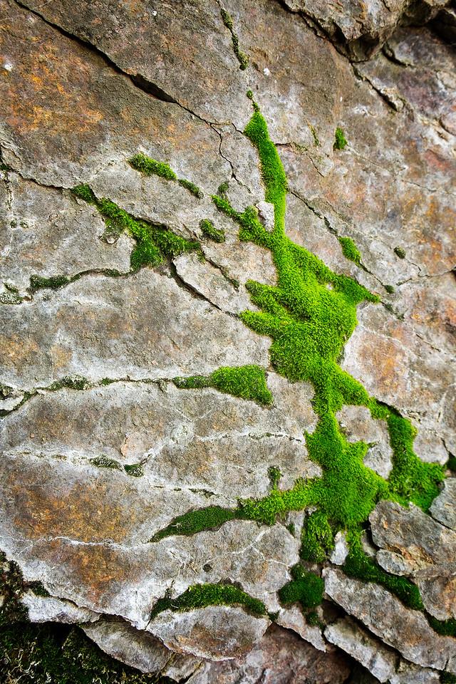 Mossy granite.  Section 16, Colorado Springs