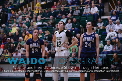 2013-2014 CSU Womens Basketball 264
