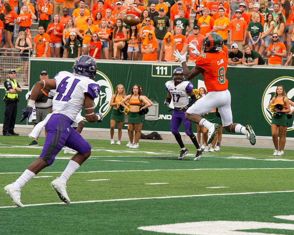 . Colorado State wide receiver Detrich Clark (8) jumps up for an easy touchdown catch against Abilene Christian University Saturday afternoon Sept. 9, 2017, at the CSU Stadium in Fort Collins. (Michael Brian/For the Reporter-Herald)