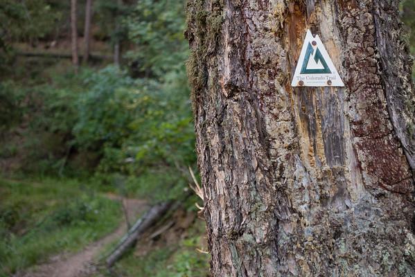 Colorado Trail 2015