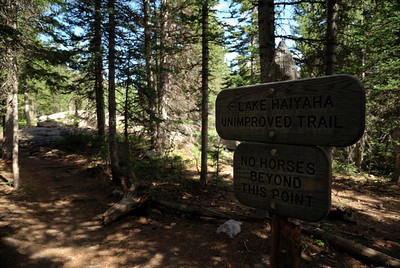 """Except, instead of taking the main trail to Lake Haiyaha, I took the """"back way"""".  Well, of course I did.  I had to.  It called to me. These things happen to me.  And, as it turned out, it was one of the true hidden gems of a trail."""
