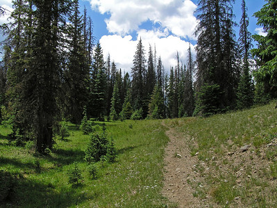"Also, this is where I made a ""mistake"" in my hike.  I was looking for a trail that cut off towards Davis Peak (and then continued on to the 7 Lakes Trail that Conor and I took; see http://orrn.wordpress.com/2007/12/02/7-lakes-with-conor-zirkel-wilderness-co-august-3-2007/ )."