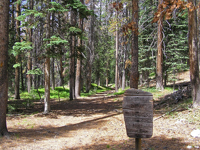 You enter the official Wilderness (Zirkel) area a ways up the trail.