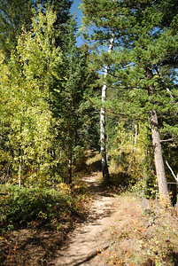 This section of the trail, up to the falls, is a nice hike through a small valley.  Lots of aspen and you get to cross the stream several times.
