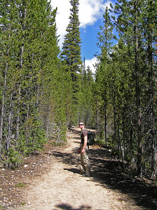 """Till you intersect with an old road that you will follow for approximately the first mile.  It's a mostly level """"walk"""" along the road/trail.  Fairly pleasant, but hard to get any view due to the trees."""