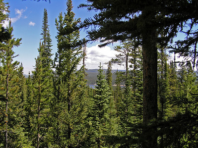 That said, occassionally you will get a glance at the country to the south of the trail .  Even enough to catch a glimpse of Chambers Lake.