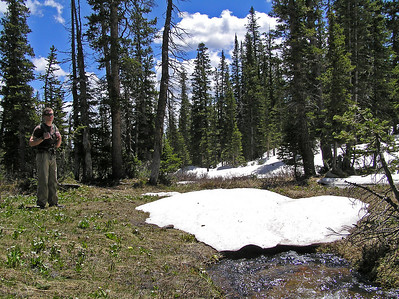 Late in June Will and I headed up to the Blue Lake trailhead (just before you get to Cameron Pass up the Poudre River).  You hit timberline right before getting to Blue Lake itself, but I thought it was late enough in the summer that the snow would be mostly gone