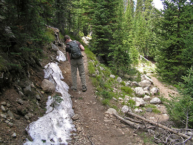When you reach this point (you can see the main stream (Fall Creek) down the little trail to the right), you are leaving the old road and getting ready to head uphill.  Interesting.  More snow.
