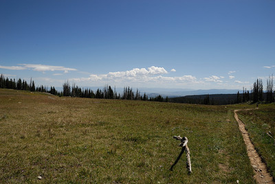 Buffalo Pass with Will, August 15, 2010