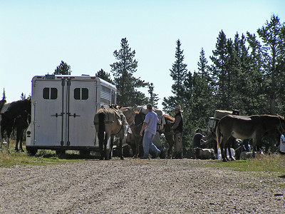Here is a group that is getting ready to do some old time horse pack'n.  We never saw them on the trail, but I'm sure they had a good time.