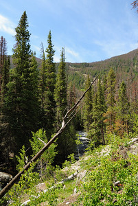 The trail stays fairly high above the East Inlet stream for the first part.  But, you do get some nice views.
