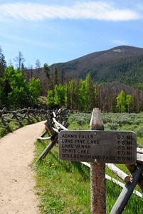 I was a trifle put off by all the cars in the parking lot, but as it turned out, the vast majority only went to Adams Falls (3 tenths of a mile according to the sign) or a short distance past that.  I was heading to Lone Pine Lake.  An 11 mile round trip.