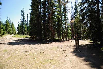 "We eventually topped out on the ""continental divide trail"".  Which at this point was more of a road than a trail.  But, still nice.  We took a short break (so I could try and figure out which dirt road to hike up to get to our turn off)."