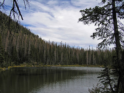 """Finally got over the """"uphill"""" section and the trail (using the term loosely) wandered by a nice little lake."""