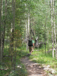 But, have to say, it was quite pleasant.  Aspens were in full summer glory.  And, as normal, Conor was in front : )