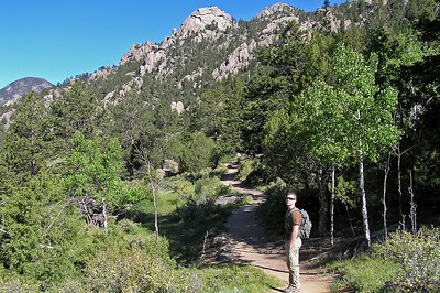 That said, for another couple of miles, the trail is almost flat (relatively speaking) and a real delight to hike.  We were having a splendid time; everything was green, the air was cool, no mosquitos or flies, the sky was blue, just about as perfect as you could wish for.