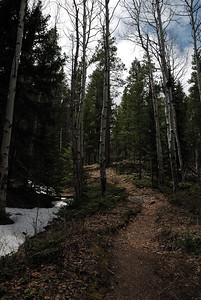 However, the leaves had all disappeared by the time I got up to the intersection of the Lawn Lake trail that comes up Black Canyon.  Even saw a little snow (more than the prior year).