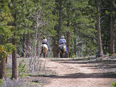 I did not see many people on the trail (relatively speaking). So, other than the first couple right at the beginning, I only saw 3 other groups of people, and they were all on horses. Yep, Red Feather Lakes has got a real high horse population (pretty good riding country and close to even more to the west).
