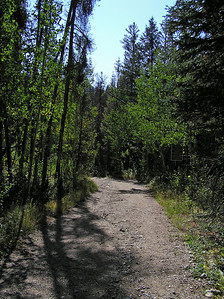 The first part of the trail follows an old road that, as far as I could tell, was only partially used.  There is a sign that says to stay on the first so many miles of the trail as it passes through some private land.  But, since it's all very pretty looking, and no traffic to speak of, it's a very pleasant walk.  This first few miles of the trail is an excellent place to take very young children.  They can run up an down the road and not get into any trouble (and hopefully sleep good that night : )