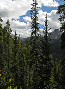 Now, the good thing is that, yes, I did start to see the surrounding mountains.  The bad thing is, why, I'll just go a little further and see more.  So, I kept going up the trail.  But, the views were getting to be quite nice.  As you can see though, the clouds are beginning to increase.