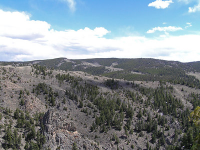 This is looking east across the North Platte.  Much of that is the Medicine Bow National Forest.