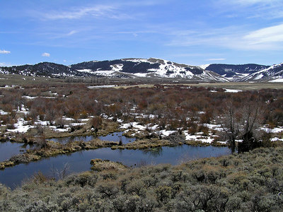 Looking up the valley across some beaver ponds that are adjacent to the Platte River.