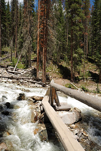 The bridge.  The water was a bit higher on the way back down later in the afternoon (because of snow melt during the day).  As can be seen by the bare rocks, at times the river is probably flowing over the bridge.