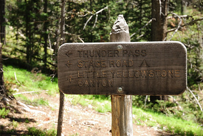 The trail to the left goes up to the Grand Ditch and the trail to the right goes up to Little Yellowstone.  However, if you look on the map you can take the trail to the left and, once it crosses the Colorado River, there is another split in the trail where you can head up to the little Yellowstone (and on to Poudre Pass).  That's the way I went.  I think.  Pretty sure.  I think I came back the other way and stayed high above Lulu City.  Oh well, just get a map (or, look at the one on my other web site) and it will be all clear.