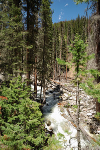 The trail follows up a, at this time of the year, very rapidly flowing stream.  It was loud.