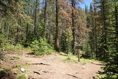 "Alrighty then.  Let's think about this.  So, if you do the math, turning around at this point (Lulu) would give a nice hike of just around 7.4 miles.  That's normally enough to make a person feel like they did a little bit of walking.  However, the sign says, from where I parked the car, that Poudre Pass, the head of the Colorado River, is 7.5 miles.  So, that would be a 15 mile hike round trip.  In addition, most of the hike to Lulu is very mild in nature.  Sorta flattish.  However, you gain some quick altitude in many places once you get past Lulu.  The final thing is that there isn't any real ""destination"" before Poudre Pass other than what they call the ""Little Yellowstone"" canyon.  So, if you want to head to Poudre Pass, you better be ready for just a bit of a hike.   One final note.  The hike to Lulu is pretty safe (relatively speaking) for children.  Even smaller children.  There aren't any real cliffs to fall off of, you just need to keep the kids in sight at all times.  The same cannot be said for the little Yellowstone area.  There are some very steep (and long) drop offs right along the trail that could be construed as ""not child friendly"".  If you take your children up to the little Yellowstone area, not only keep them in sight, but close at hand.  At certain places, depending on the child, you maybe should keep their hand in your hand.   So, I thought about it for a few minutes and then, particularly since the day looked so nice, decided to go all the way.  You will come to a fork in the trail prior to crossing the Colorado River."