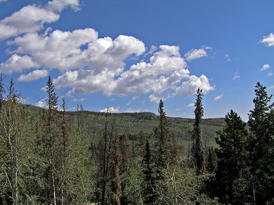 Photo from the same area, but looking at a aspen covered mountain close by.