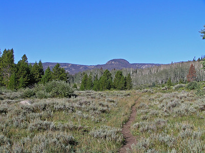 """Here is a bit of a zoom later on up the trail a short ways.  So, I'm pretty sure that's Round Mountain : )  Round Mountain lake is just to the right of it right below the farthest """"hills""""."""