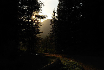 If you head up over Cameron Pass, going west, mind you, you drop down into the Michigan river valley.  And, you soon enter the rather, um, dainty little town of Gould.  Yes, I've zoomed through it many a times headed for Walden and the Zirkels.  But this time, I turned off onto Forest Access road 740 in Gould, crossed the Michigan River, and headed up the road into the unknown.  And boy, was I in for a shock.  Because when you cross the river you enter the REAL town of Gould.  It can't be seen from the highway.  But, there's a town back in there.  Lots of houses.  Lots of families.  Very interesting.  Very pretty.  Very secluded.