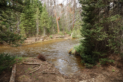 After only a short hike, through a pretty meadow, I came to Lone Pine creek.  Reality hit.  This was late spring/early summer.  Uh, oh yeah, snow melt.  Oh yeah, water.  Sigh.  The creek was high.  Way too high to even consider wading across.  Do you think the water was cold?