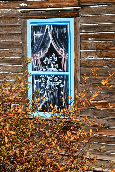 Imagination - Ashcroft Ghost Town, Colorado - Sandy Reed - September 2012