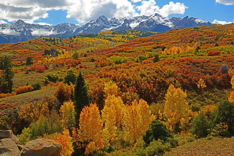 Fall at Dallas Divide - San Juan Mountains, Colorado - Ed Lower - September 2012