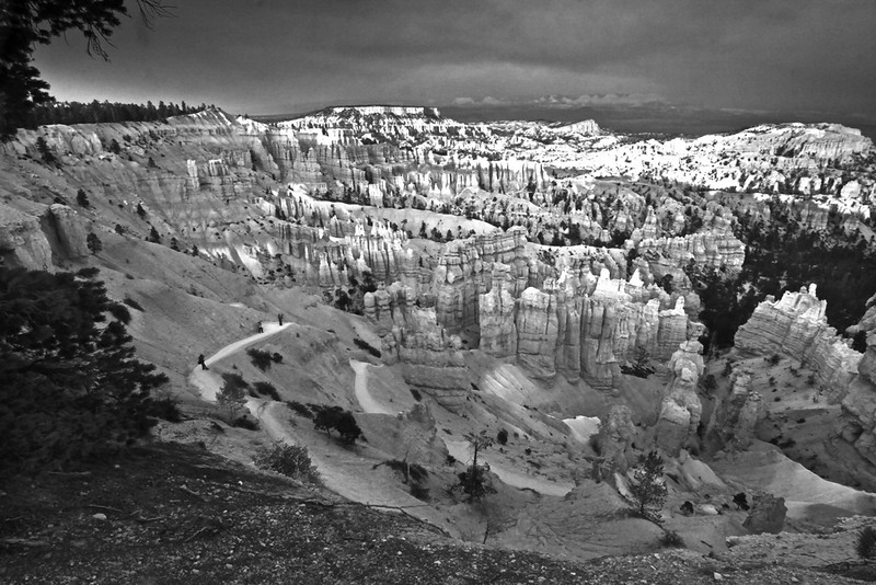 Bryce Canyon in Monotone - Bryce Canyon National Park, Utah - Sandy Reed - October 2012