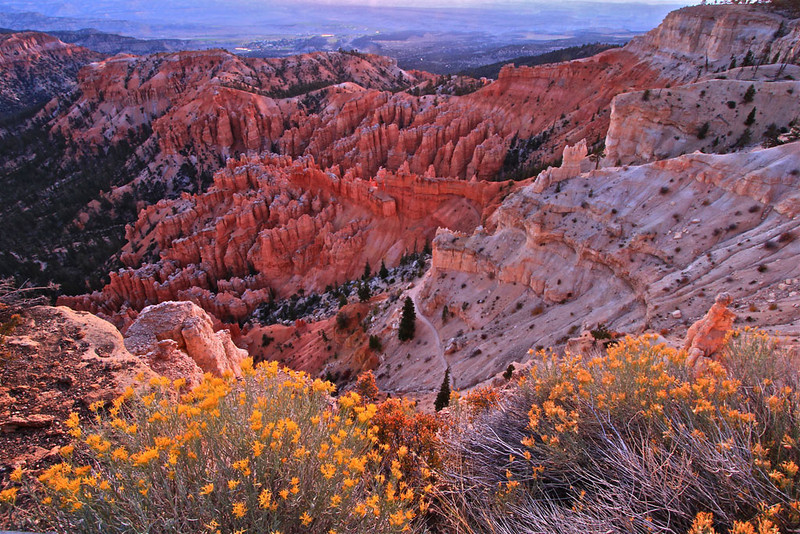 Bryce Color - Bryce Canyon National Park, Utah - Sandy Reed - October 2012