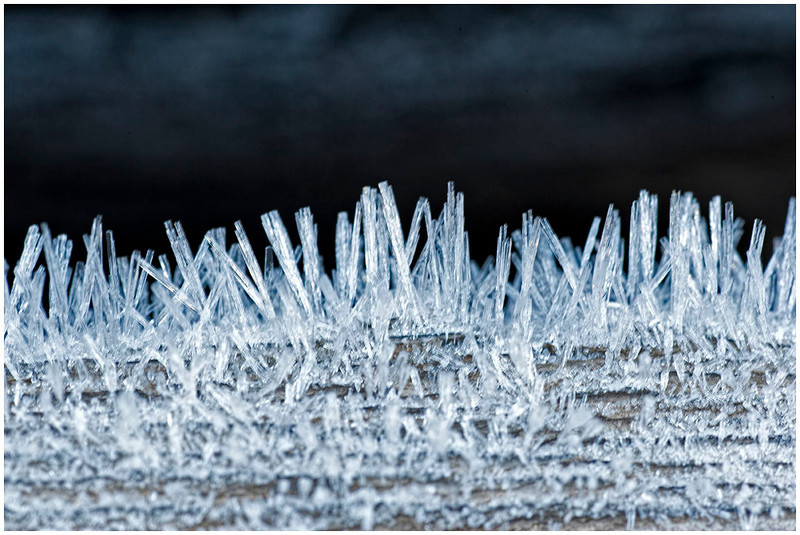Hoar Frost on a log (macro) - Longfellow Mine, Red Mountain Pass, Colorado - Don Plocher - September 2012