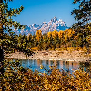 Tetons in the River