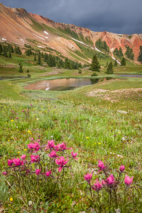 Red + Red at Grey Copper Gulch - San Juan Mountains, Colorado - Linda Hanley - July 2015